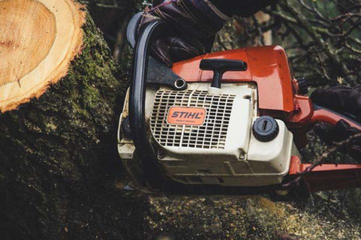 Ulovlig felling av trær på naboeiendom – kr 600 000 i erstatning